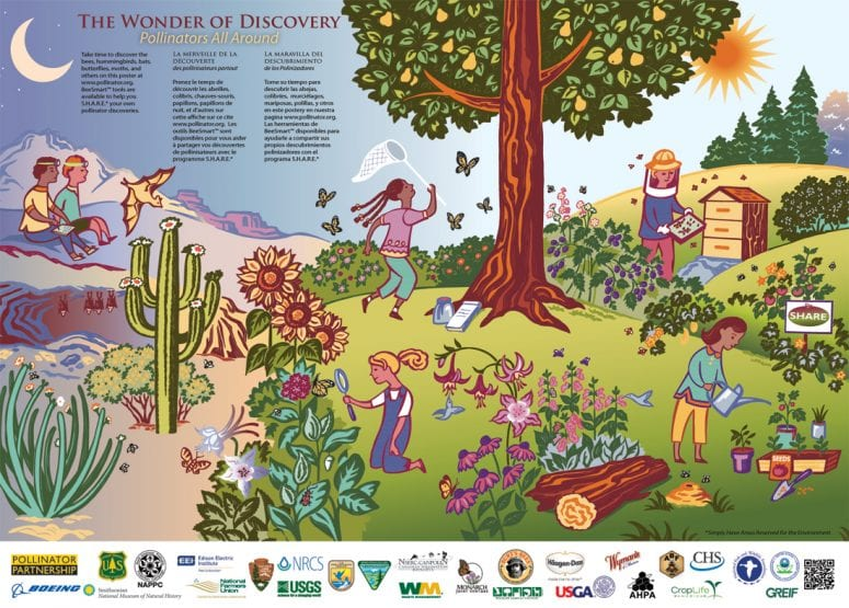 Free  The Wonder of Discovery 2013 Pollinator Poster