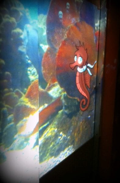 Picture Swimming Through Sea Life Aquarium