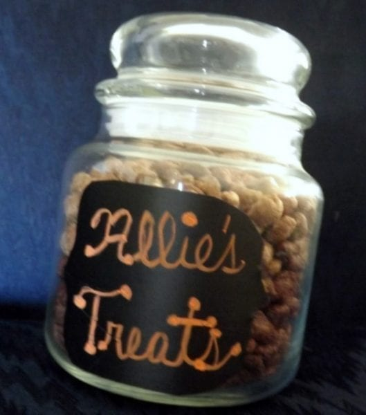 Easy To Make Treat Jar