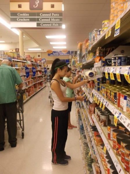 Shop Smarter at Food Lion and SAVE! #FLVISA15