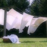 sheets in the breeze