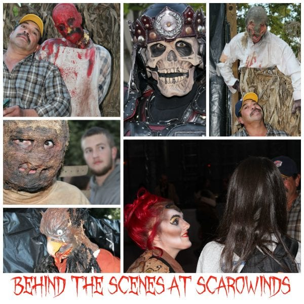 Behind the Scenes at SCarowinds