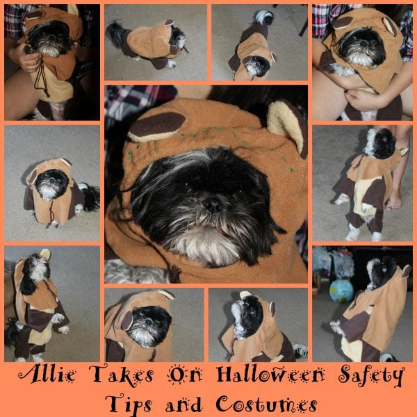 Allie Takes On Halloween Safety Tips and Costumes