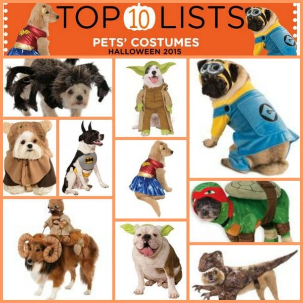 top ten pet costumes