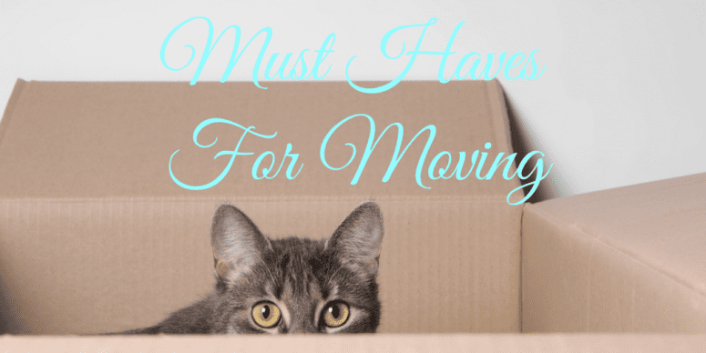 Must Haves For Moving