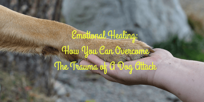 Emotional Healing: How You Can Overcome the Trauma of a Dog Attack