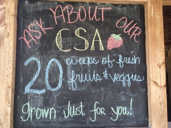 CSA Program
