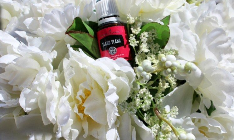 5 Different Uses For Ylang Ylang Essential Oil