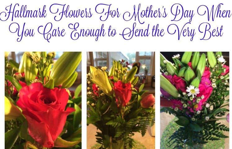 Hallmark flowers care enough to send the very best this Hallmark flowers