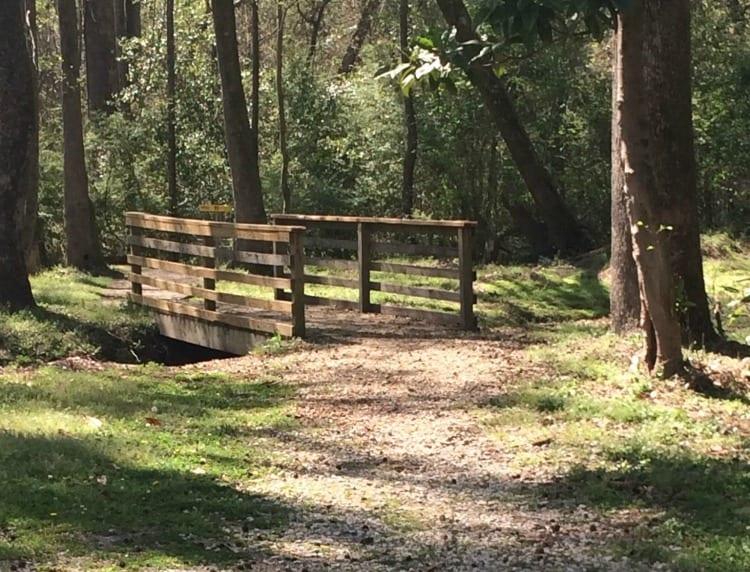 Exploring Stoney Creek Park