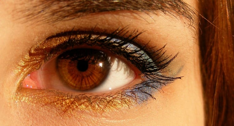 Genetics and Eye Health: Inherited Diseases, Parenthood and Future Treatments