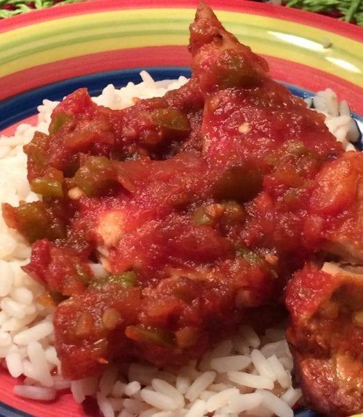 salsa chicken (1)
