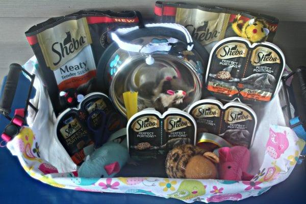 cat food basket