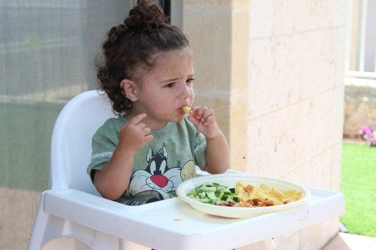 Tips for Making Sure Your Picky Eater is Getting a Balanced Diet