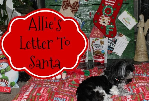 allie-s-letter-to-santa-feature