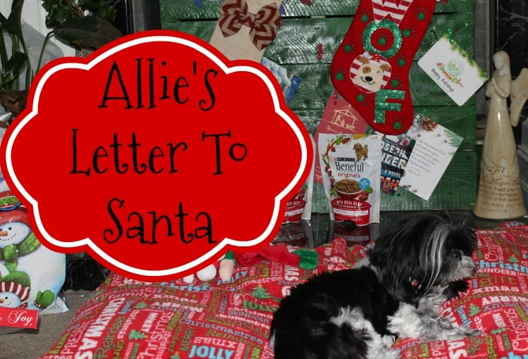 Allie's Letter To Santa