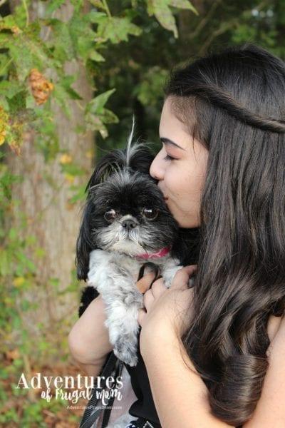 Allie Loves Her Fancy Dog Collar