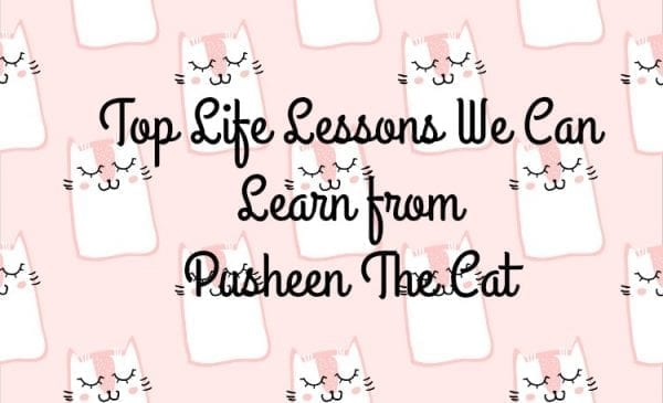 Top Life Lessons We Can Learn from Pusheen The Cat from North Carolina Lifestyle Blogger Adventures of Frugal Mom