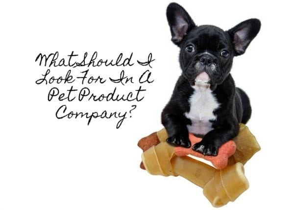 What Should I Look For In A Pet Product Company? by North Carolina Lifestyle Blogger Adventures of Frugal Mom