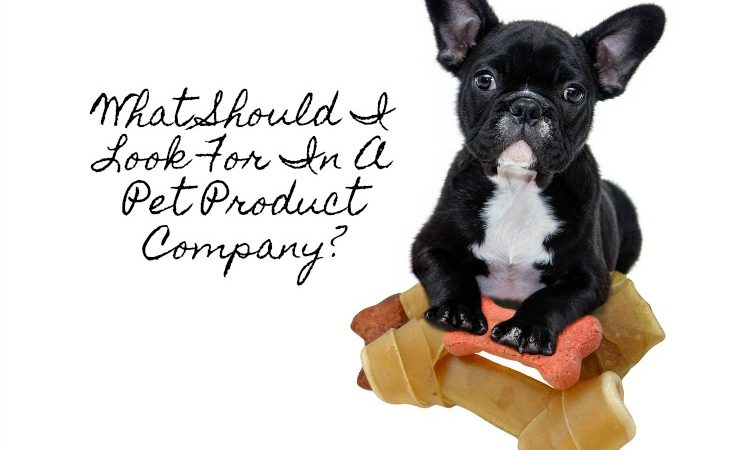 What Should I Look For In A Pet Product Company?