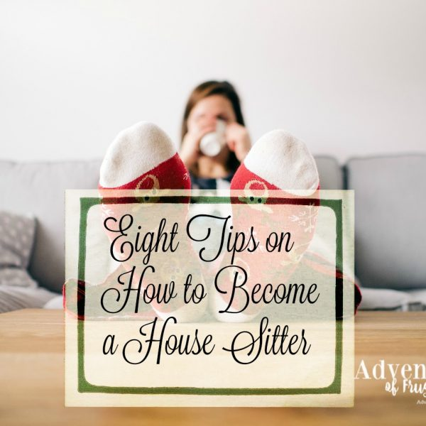 Eight Tips on How to Become a House Sitter