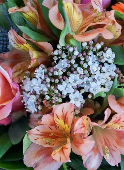 Tips To Choose The Best Online Flower Delivery Services