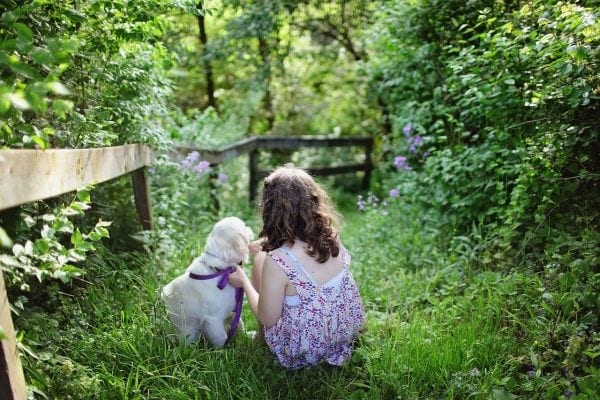 Tips For Making Your Lawn And Yard Pet Friendly from North Carolina Lifestyle Blogger Adventures of Frugal Mom