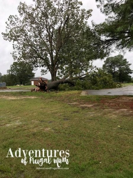 Biz Helps Me Give Back After Hurricane Florence from North Carolina Lifestyle Blogger Adventures of Frugal Mom