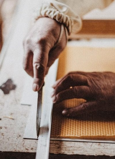 DIY Made Easy: How to Choose the Best Workbench For Every Project