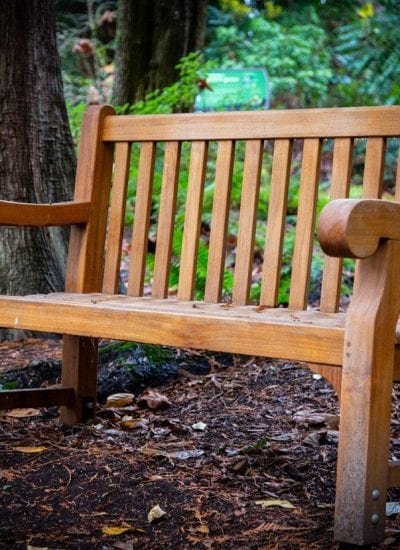 Why You Should Use Wood Furniture in Your Home